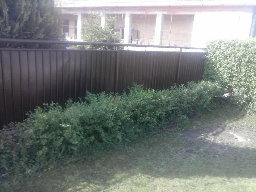 Foto zázračný plot